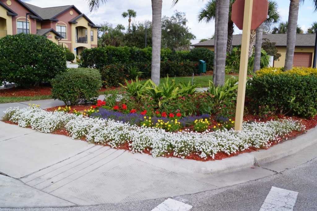Central florida landscaping photos brevard county for Landscape design services